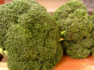 heads of broccoli